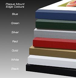 Plaque Edge Color